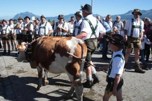 Viehscheid / Almabtrieb 2015 im Allgäu
